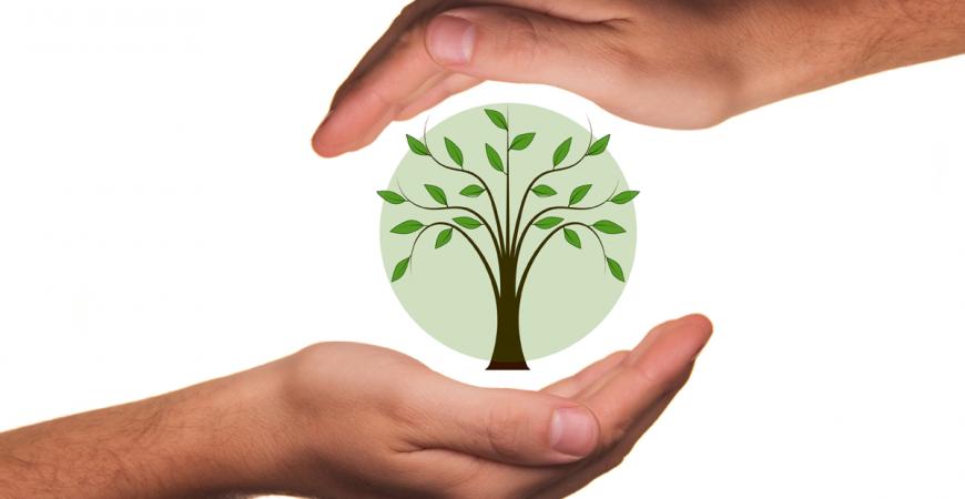 3 pasos hacia la eco-consciencia