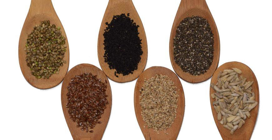 La semilla de una buena alimentación